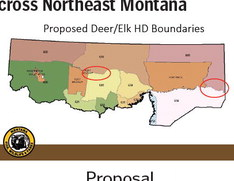 Region 6 Hunting Season Proposals To Be Discussed  At Four Meetings Across Northeast Montana